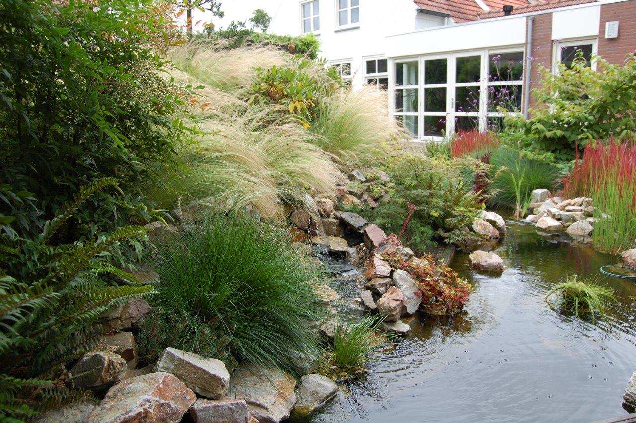 Oosterse tuin - Budel -1